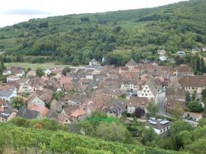 ブドウ畑から見下ろす小さな村。アルザスはこんな中世そのままの小さい村がブドウ畑の中に点在している。